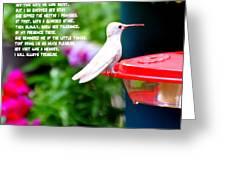 Albino Angel Greeting Card
