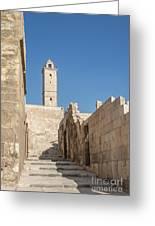Aleppo Citadel In Syria Greeting Card