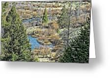 Alice Creek Greeting Card