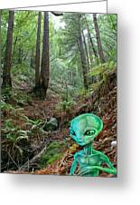 Alien In Redwood Forest Greeting Card