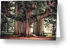 Alive Guardian. Park Of The De Haar Castle Greeting Card