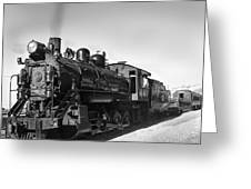 All Aboard Greeting Card by Robert Bales
