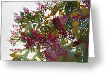 Aglow Greeting Card