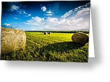 All American Hay Bales Greeting Card by David Morefield