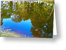 All Pond Treeflection Greeting Card