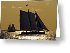All Sails Sunset In Key West Greeting Card