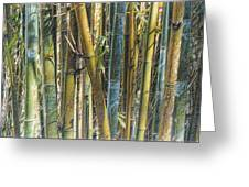 All The Colors Of The Bamboo Rainbow Greeting Card