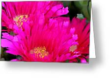 All The Flower Petals In This World 4 Greeting Card