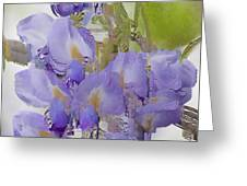 All The Flower Petals In This World 7 Greeting Card