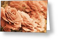 All The Orange Roses Greeting Card