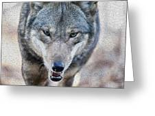 All Wolf Greeting Card