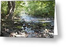 Allen Creek Greeting Card