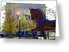 Allentown Pa Old Lehigh County Courthouse And Davinci I Horse  Greeting Card