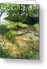 Allequash Creek On Trout Lake Greeting Card by Helen Klebesadel