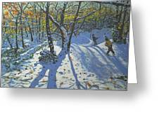 Allestree Park Woods November Greeting Card by Andrew Macara