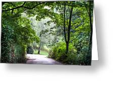 Alley Of The Petrin Park. Prague Greeting Card
