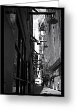 Alley - 200010 Greeting Card