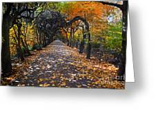 Alley With Falling Leaves In Fall Park Greeting Card