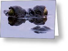 Alligator Eyes On The Foggy Lake Greeting Card