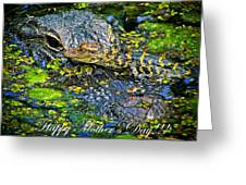 Alligator Mother's Day Greeting Card