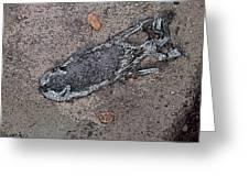 Alligator Skull Fossil 2 Greeting Card