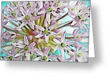 Allium Globe Greeting Card
