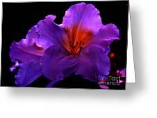 Alluring Azaleas Greeting Card