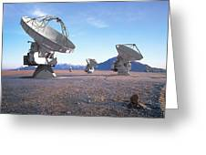 Alma Vision Greeting Card