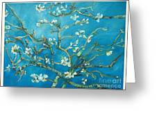 Almond Blossom Branches Print Greeting Card