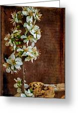 Almond Blossom Greeting Card by Marco Oliveira
