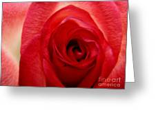 Almost Red Greeting Card