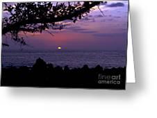 Aloha V Greeting Card