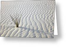 Alone In A Sea Of White Greeting Card by Mike  Dawson