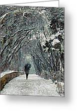 Alone In The  Winter Greeting Card