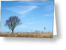 Alone Tree In The Reeds Greeting Card