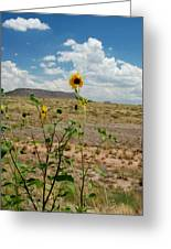Along Route 66 In Arizona Greeting Card