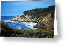 Along The California Coast Greeting Card