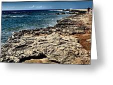 Along The Cliff Greeting Card