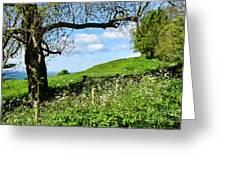 Along The Coastal Path - Lyme Regis 2 Greeting Card