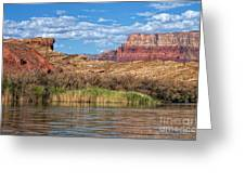 Along The Colorado River Greeting Card