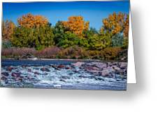 Along The Creek Greeting Card