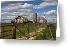 Along The Fence Line Greeting Card