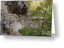 Along The Grotto Greeting Card