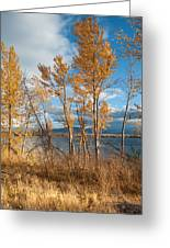 Along The Lake Greeting Card