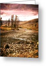 Along The Larmar River 2 Greeting Card by Marty Koch