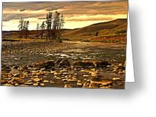 Along The Larmar River Greeting Card