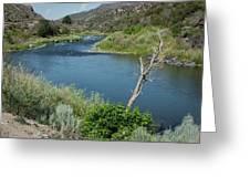 Along The Rio Grande River Greeting Card