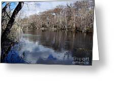 Silver River - Reflections Greeting Card