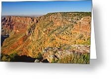 Along The South Rim Greeting Card
