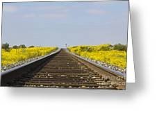 Along The Tracks Greeting Card